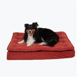 Luxury Pillow Top Mattress Bed