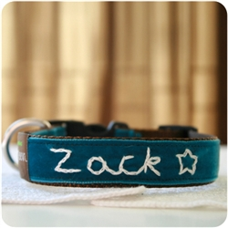 'Zack' Personalized Dog Collar