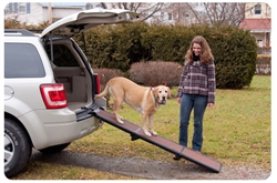 Portable Full Length Tri-Fold Pet Ramp - Chocolate / Black