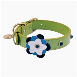 Happy Camper Collar & Leash - Green Flower