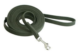 Cotton Web Training Leads