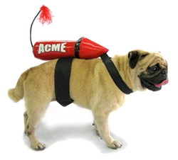 Acme Rocket Costume
