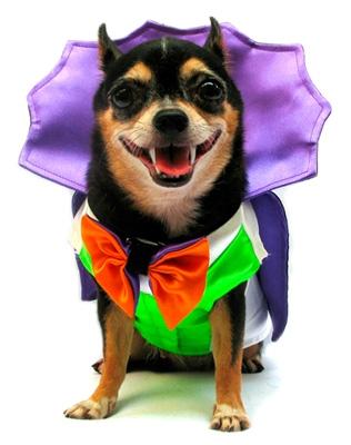 Dogula Costume