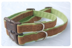 Cremini on Parrot Green Collar - Brown clasp w/nickel D ring