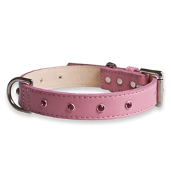 Dazzle Pink