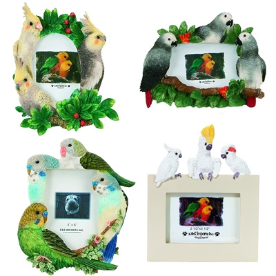 "Large Bird Picture Frames (3.5""- 4"" to 5""- 6"")"