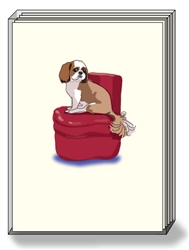Shih Tzu Chair - Boxed Notes