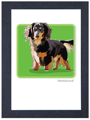 Dachshund, L. Hair - Grrreen Boxed Note Cards