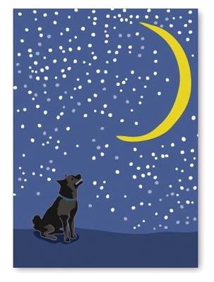 Sympathy: Dog Looking Crescent
