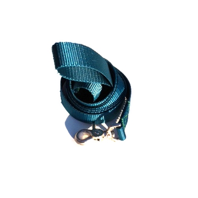 Teal Blue Webbing Collection