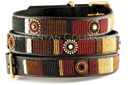 Topi Collar & Leash Collection