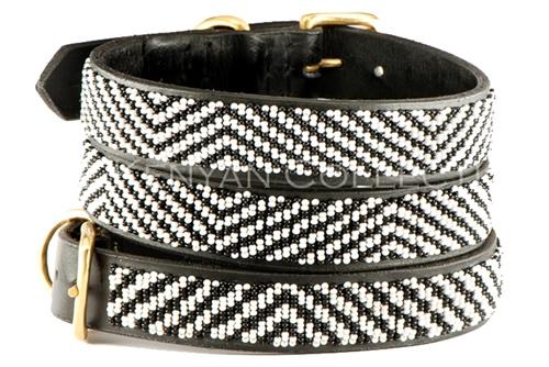 Zebra Collar & Leash Collection