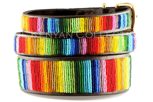 Over the Rainbow Collar & Leash Collection