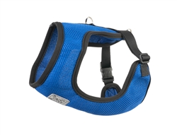 Cirque Harness - Cobalt
