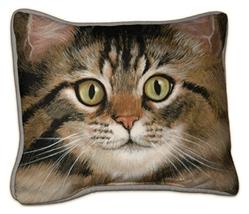Tabby Cat Pillow