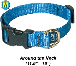 "Medium Collar, Quick Release Buckle 3/4""W x 12-19"""