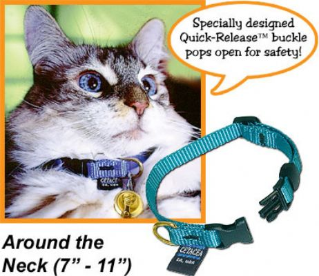 "Safety ""Pull Apart"" cat collar 7-11"""