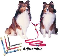 Adjustable Swivel Double Dog Coupler
