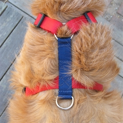 Dueling Harnesses - More Colors