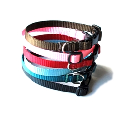 Baby Bee Dog Collars & Leads - Simply Web Narrow 3/8in