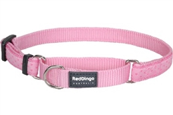 Love Sprinkles Pink - Martingale Collar