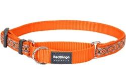 Snake Eyes Orange - Martingale Collar