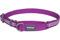 Purple Reflective Bone - Martingale Collar