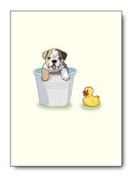 E. Bulldog Bathing - Singles