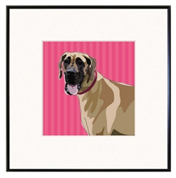"Great Dane, Fawn: Limited Edition Print in 8""x8"" fineline frame"