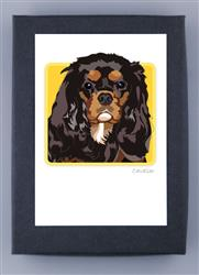 Cavalier,Black & Brown - Grrreen Boxed Note Cards