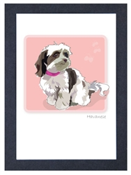 Havanese, Brown & White - Grrreen Boxed Note Cards