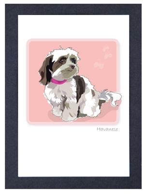 Havanese, Brown & White - Grrreen Boxed Note Cards