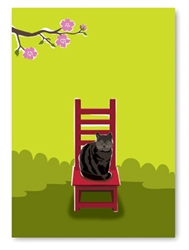 Thank you: Cat on Chair