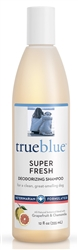 Super Fresh Deodorizin Shampoo - 12oz.- from TrueBlue