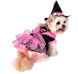 Halloween Shiny Pink Witch