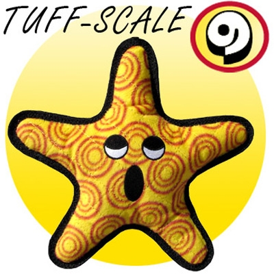 """The """"General""""  Sea Star by Tuffy's Sea Creatures"""
