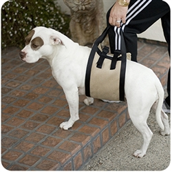 Animals Matter® Mobility Harness™