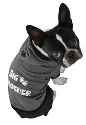 Big Brother™ Hoodie