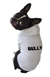Bully Hoodie