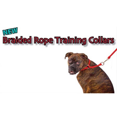 Braided Training Collars