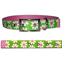 Uptown Green Daisy Collection