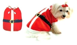 Santa Summer Uniform
