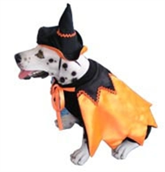 Caped Witch Costume