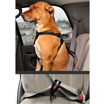 Chest Plate Harness Solid Colors w/Seatbelt Restraint by EzyDog