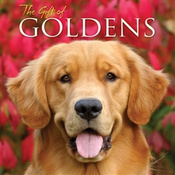 The Gift of Goldens