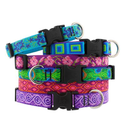 """LupinePet® 1"""" Originals EZ pack (6 pc. collars and leashes)"""