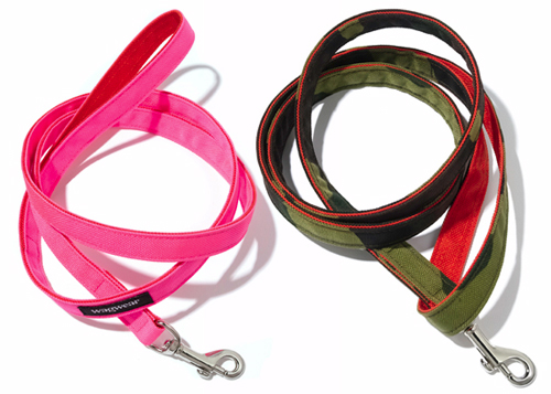 Cordura Collar, Leash & Harness