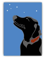 Blank Inside: Black Lab & Stars