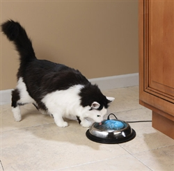 Drinkwell® by PetSafe® hy·drate™ Filtration System - Pet Blue