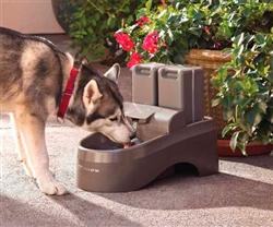 Drinkwell® by PetSafe® Outdoor Dog Fountain